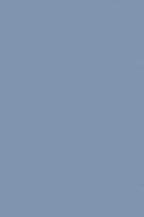 0121 PE Капри Синий