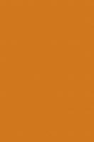 0132 PE Оранжевый