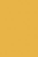 0134 PE Солнечный Свет