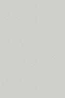 0191 PE Холодный Серый